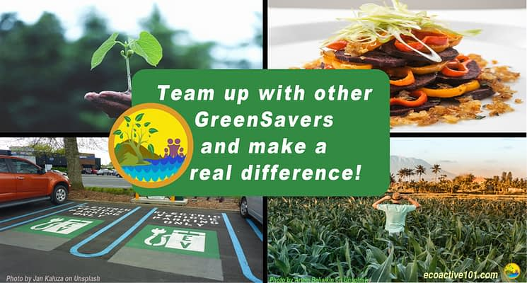 "The background shows four scenes: tree planting, electric car charging, regenerative farming, and a vegetarian meal. Superimposed on that are the words, ""Team up with other GreenSavers and make a real difference!"