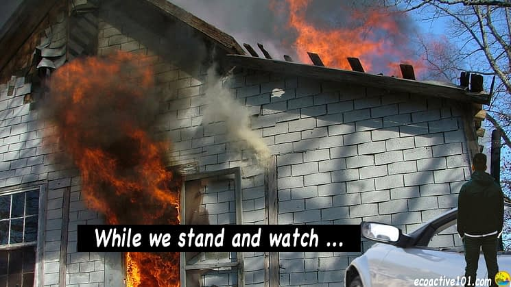 "A man stands and watches as his home burns. Words say, ""While we stand and watch ..."""