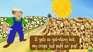 "Sun high in sky, farmer surveys his fields of puffed wheat and popped corn. Words say, ""It gets so gol-dang hot, my crops just puf an' pop!"""