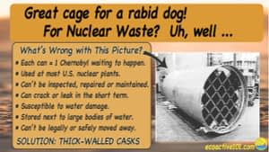 """The image title reads, """"Great cage for a rabid dog! For nuclear waste? Not so good."""" On the right is the image of a thin-walled nuclear waste canister with a grid over the opening. To the left, under the question """"What's wrong with this picture?"""" are seven bullet points, as follows: """"#1, Each can equals one Chernobyl, waiting to happen. #2, Used at most US nuclear plants. #3, Cannot be inspected or repaired. #4, Can crack or leak in the short term. #5, Susceptible to water damage. #6, Stored next to large bodies of water. #7, Cannot be legally or safely moved away."""" Across the bottom are the words, """"Solution: Replace with thick-walled casks."""""""